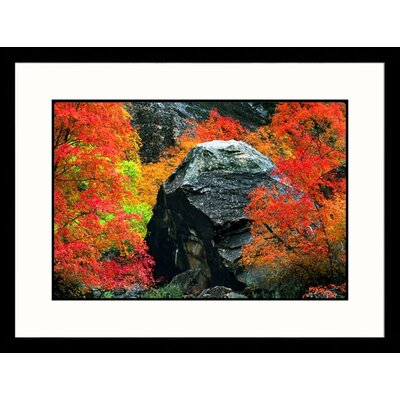 Great American Picture Peak Autumn Zion National Park, Utah Framed Photograph - Russell Burden
