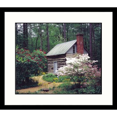 Landscapes Botanical Garden Framed Photographic Print