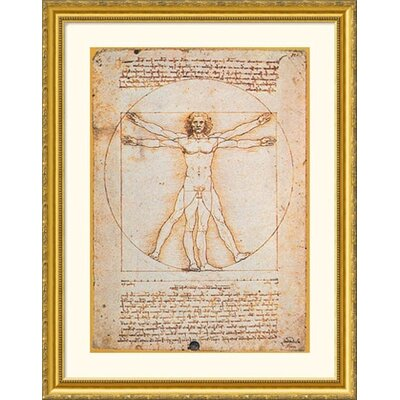 Proportions of the Human Figure (Vitruvian Man) Gold Framed Print - Leonardo da Vinci