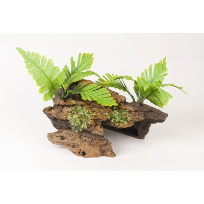 Hagen Marina Naturals Malaysian Drift wood with Plants