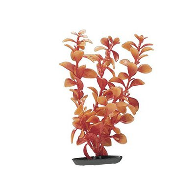 Hagen Marina Medium Vibrascaper Ludwigia Plant in Red
