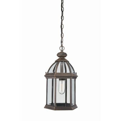 Massive Narbonne One Light Outdoor Hanging Lantern in Rust