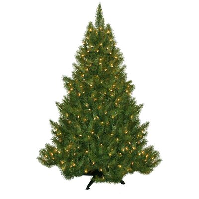 "General Foam Plastics 53"" Green Evergreen Fir Artificial Christmas Tree with 250 Pre-Lit Clear Lights"