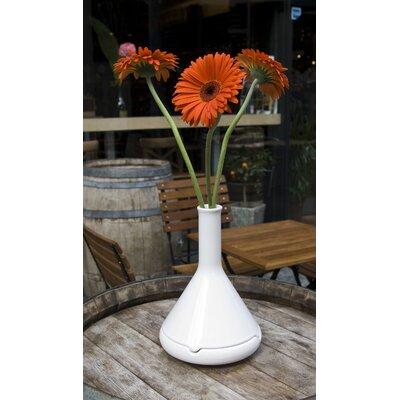 VItamin Tab A Flower Pot