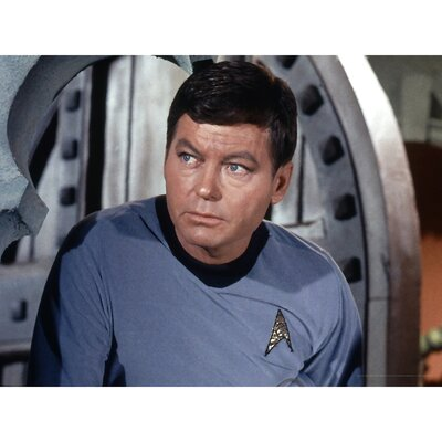 Oriental Furniture Star Trek Dr. Leonard Bones McCoy Wall Art