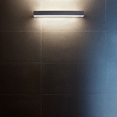 FLOS All Light Ceiling / Wall Light in Opal