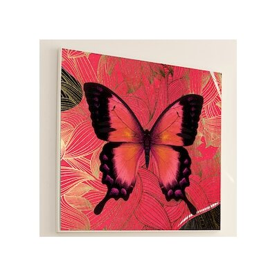 JORDAN CARLYLE Metamorphosis Butterfly Wall Art