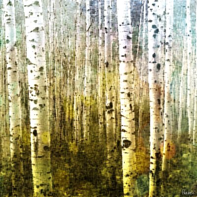 Aspen Ski Painting Print on Canvas