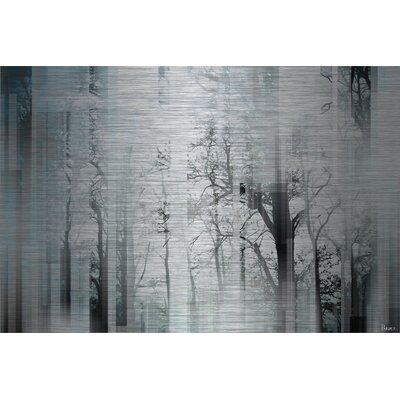 Wild Trees Graphic Art Plaque on Aluminum