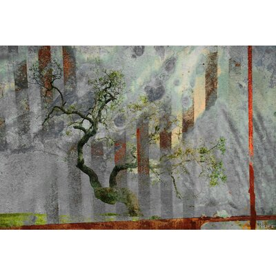 Parvez Taj Tranquility by Parvez Taj Graphic Art on Canvas