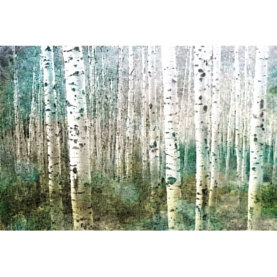 Parvez Taj Aspen Green Graphic Art on Canvas