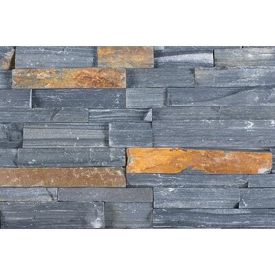 "Cabot Slate 6"" x 24"" Natural Ledge Stone in Charcoal"