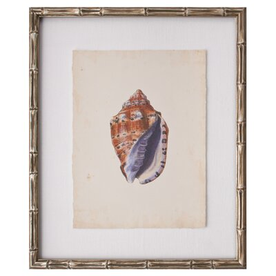 <strong>Mirror Image Home</strong> Mini SeaShells IV Art