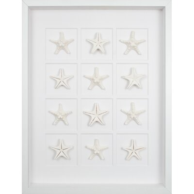 Mirror Image Home Twelve Starfish Art