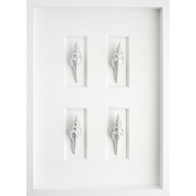 Mirror Image Home Spindle Shells Graphic Art Shadow Box