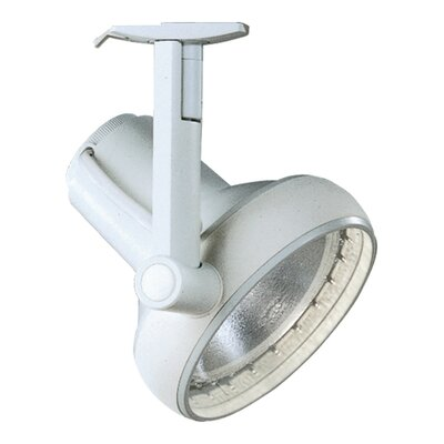 Lightolier Soft-Edge Spots PAR30 Track Light