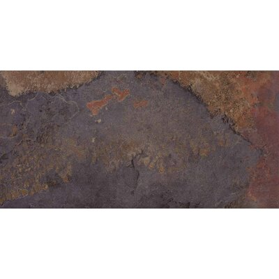 """Epoch Architectural Surfaces 24"""" x 12"""" Glazed Porcelain Field Tile in Multi"""