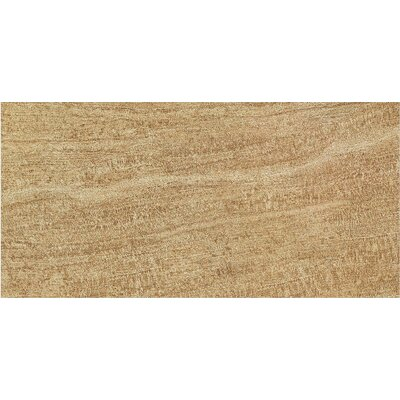 "Epoch Architectural Surfaces 24"" x 12"" Porcelain Field Tile in Brown"