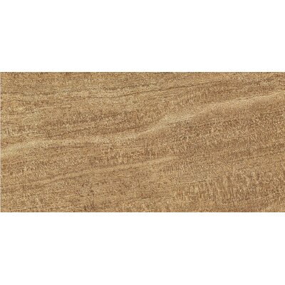 "Epoch Architectural Surfaces 24"" x 12"" Porcelain Field Tile in Walnut"