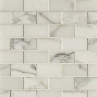 "Epoch Architectural Surfaces 12"" x 12"" Honed Marble Mosaic in Calacatta"