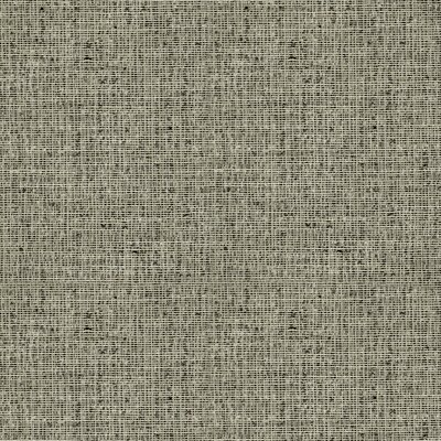 DwellStudio Tonal Tweed Curtain Panel