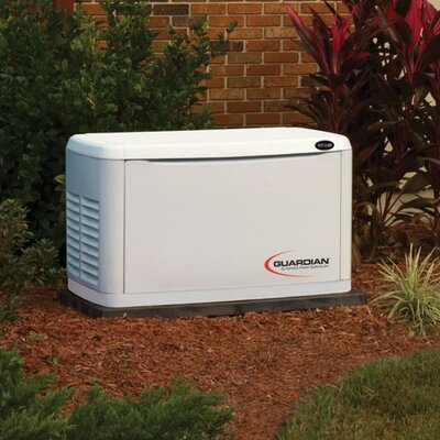 Generac 8 Kw Air-Cooled Single Phase 120/140 V Standby Generator with Transfer Switch
