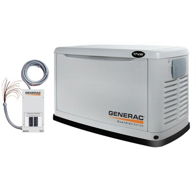 17 Kw Air-Cooled Single Phase 120/240 V Standby Generator with Transfer Switch in Steel - ...