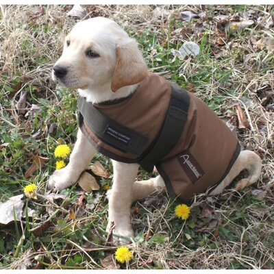 Breathable Waterproof Dog Rain Coat