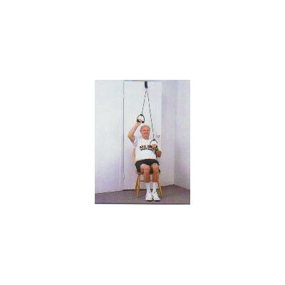 All Pro Exercise Products Power Weighted Door Pulley