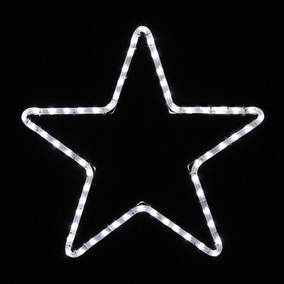 Holiday Lighting Specialists Small Five Point Star Led Rope Light