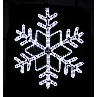 Holiday Lighting Specialists Twinkle 6 Snowflake Rope Light