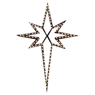 Holiday Lighting Specialists Small Star of Bethlehem