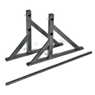 Pendlay Elite Pull-Up System