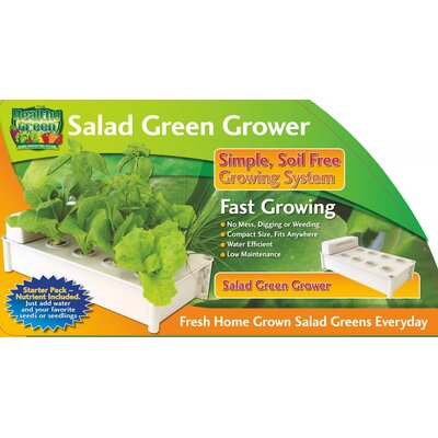 Creative Motion Salad Green Grower