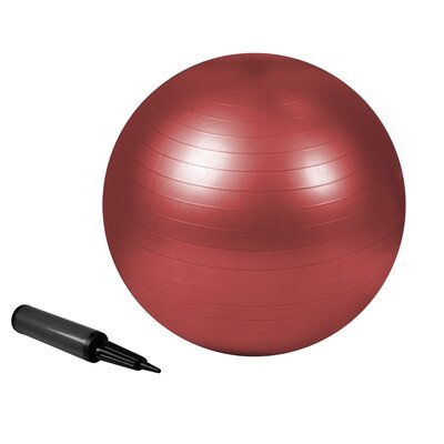 Zenzation Exercise Ball