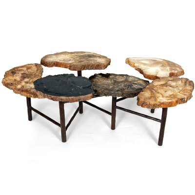 Control Brand Good Form Petrified Coffee Table