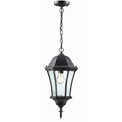 Z-Lite Wakefield 1 Light Outdoor Chain Light