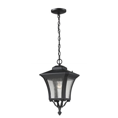 Z-Lite Waterdown 1 Light Outdoor Pendant