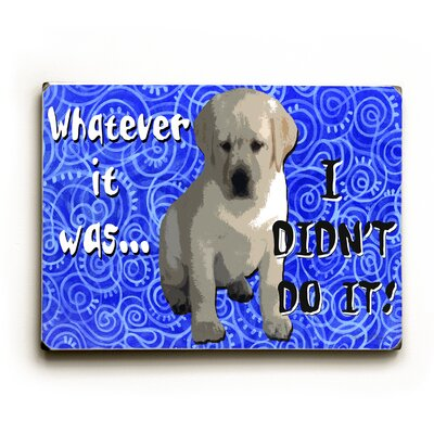Artehouse LLC I Didn't Do It! Textual Art Plaque