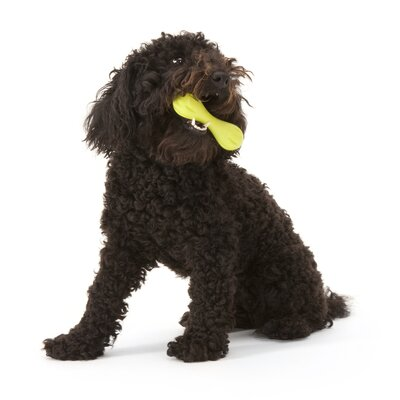 West Paw Design Zogoflex™ Mini Hurley Dog Toy