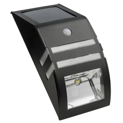 Solar motion detector security light