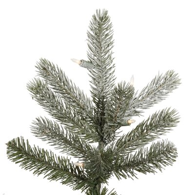 Vickerman Co. Frosted Frasier Fir 7.5' Green Artificial Christmas Tree with 650 Clear Lights with Stand