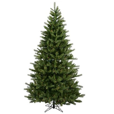 Vickerman Black Hills Spruce 6.5' Green Artificial Christmas Tree with 500 Clear Lights with ...
