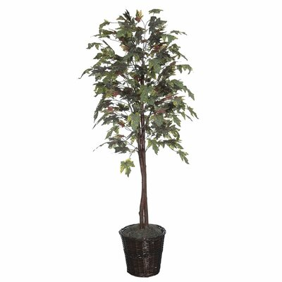 Vickerman Executive Economy Artificial Potted Natural Frosted Maple Tree in Basket