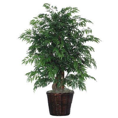 Vickerman Deluxe Artificial Potted Natural Ming Aralia Tree in Basket