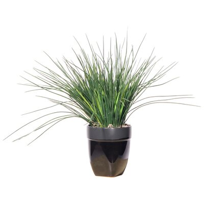 Vickerman Co. Floral Grass