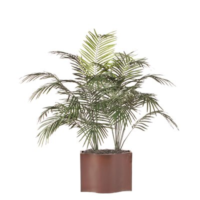 Vickerman Co. Deluxe Dwarf Palm Tree