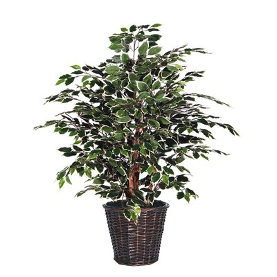 Vickerman Co. Blue Variegated Tree in Basket