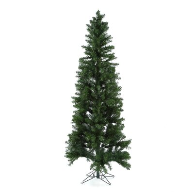 Vickerman Salem Pencil Pine 7.5' Green Artificial Christmas Tree with 350 Clear Lights with ...