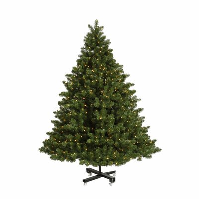 Vickerman Co. Grand Teton 7.5' Green Artificial Christmas Tree with 850 LED White Lights